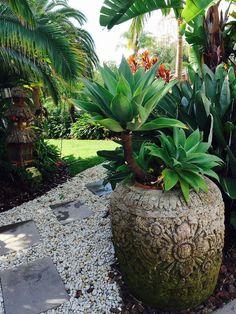 My Balinese garden . - My Balinese garden . Tropical Backyard Landscaping, Tropical Patio, Tropical Garden Design, Tropical Plants, Landscaping Ideas, Tropical Gardens, Landscaping Software, Tropical Style, Backyard Patio