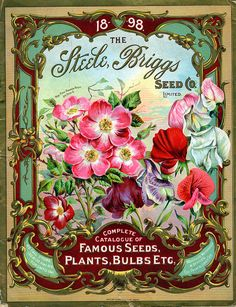 The Steele, Briggs Seed Co. 1898--the board this is pinned from has a bazillion seed catalogs. The colors on this one are amazing.