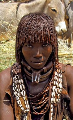 Hamar woman with iron marital torques Trading dry grass in small Hamar market town in Ethiopia's lower Omo Valley. Adorned with traditional cowrie-shell collar and iron marital torques. Upper torque with phallic protrusion is wrapped in leather and signifies first-wife status.
