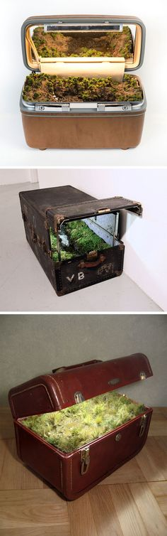 traveling landscapes miniature ecosystems tucked inside vintage suitcases by kathleen vance is part of Art inspo - Traveling Landscapes Miniature Ecosystems Tucked Inside Vintage Suitcases by Kathleen Vance Coolart Designs Illusion Kunst, Vintage Suitcases, Paludarium, Miniture Things, Amazing Art, Awesome, Artsy Fartsy, Cool Art, Art Projects