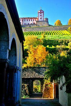♕ |  Looking up Marienburg - Vineyards, Wurzburg, Bavaria, Germany  | by © biosynthesis24  by biosynthesis24, via Flickr