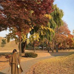 Fall Is Here, We Fall In Love, Autumn Aesthetic, Aesthetic Photo, Autumn Cozy, Harvest Season, Rainy Season, Best Seasons, Life Inspiration