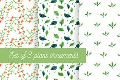 Hand drawing plant patterns by Svet22one on @creativemarket