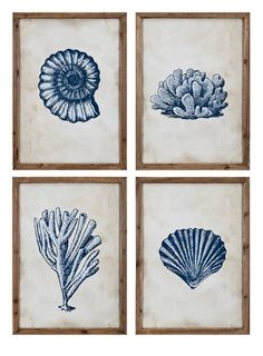Begin your very own gallery art wall and lend coastal appeal to your living room walls with this set of four large Rustic Blue Coral and Shells Framed Art pieces. Framed Art Sets, Framed Art Prints, Framed Wall, Shell Frame, Rustic Blue, Glass Printing, Coastal Wall Art, Coastal Decor, Coral Blue
