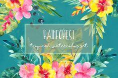 Rainforest by Charushella on @creativemarket