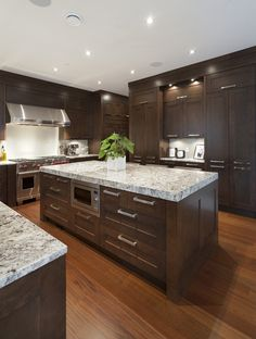 Modern Kitchen. We're staining our cabinets dark and getting all new stainless appliances. These granite countertops look good with the combo so we're going to try to find some that look like this.