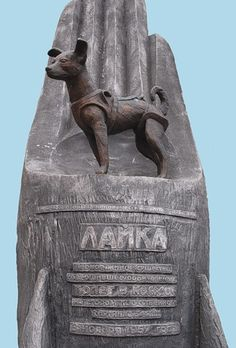 Laika; monument to the first dog into space. A hero of the Soviet Union's space program. I believe it is made out of stone and metal.