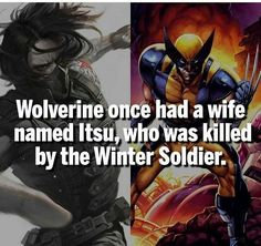 20 Facts About Marvel to Kickstart Your Superheroes Knowledge - The internet has generated a huge amount of laughs from cats and FAILS. And we all out of cats. Marvel Comic Universe, Comics Universe, Marvel Funny, Marvel Memes, Marvel Dc Comics, Marvel Cinematic Universe, Marvel Avengers, Ms Marvel, Disney Marvel