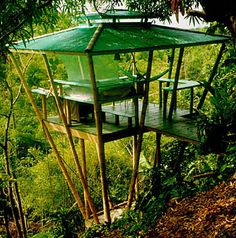 tropical bamboo architecture: treehouse vacation rental « HAUTE NATURE