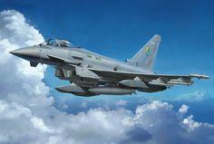 Eurofighter Typhoon Single Seater (T. Hoshino, Hasegawa box art)
