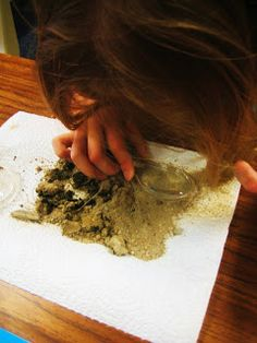 Nice soil studies unit - great photos and a free PDF of the whole unit!