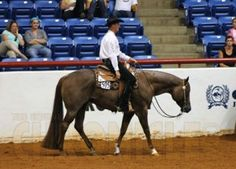 3-Year-Old and Over Limited Horse Western Pleasure at 2013 Reichert Celebration
