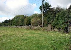 Disused Stations:Wetherby Racecourse Station Disused Stations, Yorkshire, Country Roads, Yorkshire Terrier Puppies
