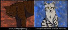 """i have about just as hard a time choosing between these two as Dovewing does both screenshots in """"The Forgotten Warrior"""", i'm too lazy to check pages : P lol, can u tell i was bored with background..."""