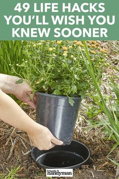 Why Didnt I Think Of That 49 Life Hacks Youll Wish You Knew Sooner ideas Didnt Hacks Knew Life Life hacks Sooner Youll Easy Garden, Diy Garden Decor, Garden Ideas, Diy Decoration, Garden Inspiration, Simple Life Hacks, Useful Life Hacks, Gardening For Beginners, Gardening Tips