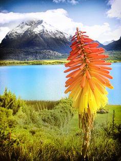 Lake Mascardi - Bariloche - Argentina