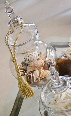 Apothecary Jars For Shells...