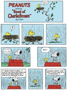 Old Cartoons, Animated Cartoons, Funny Cartoons, Peanuts Cartoon, Peanuts Snoopy, Peanuts Comics, Snoopy Love, Snoopy And Woodstock, Peanut Pictures