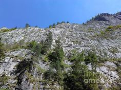 Standing Tall - The Bicaz Gorge