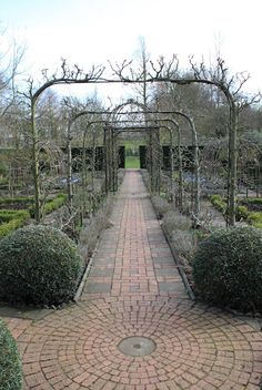 Potager in winter, designed by Rosemary Verey. Look at the pruning on the cordonned fruit trees that arch over the walkway.