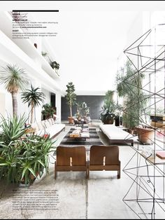 Modern indoor space with tons of house plants