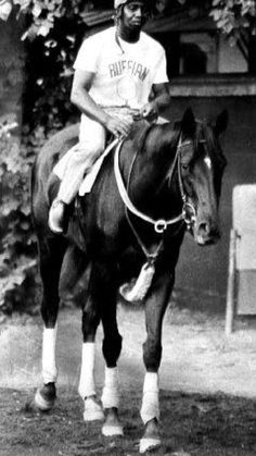 Ruffian. What horse-crazed preteen girl was not obsessed with her?