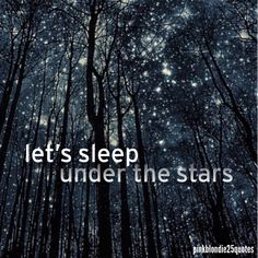 Le ciel étoilé vu de la foret<<Translation by me~: The starry sky seen from the forest. Beautiful Sky, Beautiful Landscapes, Beautiful World, Beautiful Places, To Infinity And Beyond, Science And Nature, Night Skies, Sky Night, Night Forest