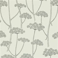 Sanderson - Traditional to contemporary, high quality designer fabrics and wallpapers   Products   British/UK Fabric and Wallpapers   Anise (DCFL211650)   Colour for Living Wallpapers