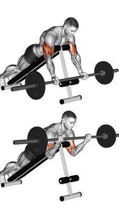 A better way to bicep curl. #arms #fitness #workout #ideas #biceps
