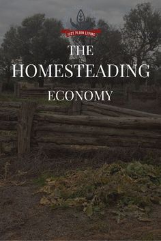 There's an underground economy involved in homesteading based on DIY and self-reliance