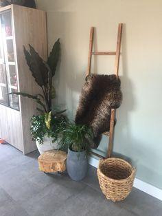 Planten huiskamer schapenwolletje houtenladder # justloveit