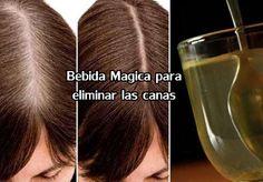 Las canas salen en el cabello a causa de la perdidas de la pigmentación en nuestro cuero cabelludo, esto hace que nuestro pelo cambie a un color blanco o cenizo. Muchas personas confunden las canas con la edad de las personas, pero esto no tiene nada que ver. La melanina es una sustancia que nuestro…