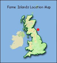 Image from http://www.wildsight.co.uk/images/articles/finr/farne-loc-map-200x220.jpg.