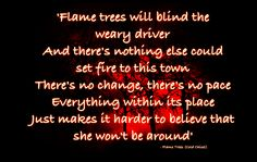 FLAME TREES - COLD CHISEL Love Songs Lyrics, Music Lyrics, My Music, Jimmy Barnes, Flame Tree, Lyric Tattoos, Greatest Songs, Make Me Happy, Rock Music
