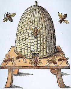 http://americangardenhistory.blogspot.com.au/2009/01/garden-beehives-history-in-america.html