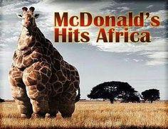Mc Donalds hits Africa