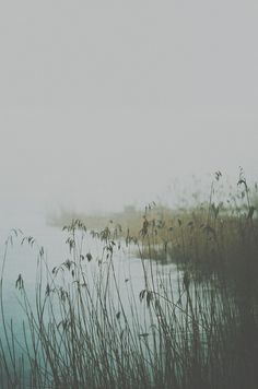 echoes from the last winter by Annija Muižule, via Flickr