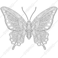 Butterfly Spring Flowers 2 Coloring Pages For Mothers Day Greeting Cards Animal