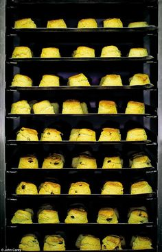 Our timeless recipe. We serve more than scones a year. Lemon Drizzle Cake, Loaf Cake, Round Cakes, Doughnuts, Afternoon Tea, Mail Online, Daily Mail, Scones, Breads