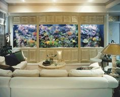 Huge wood framed built in aquarium / fish tank in living room