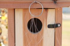 How to Sparrow-Proof a Bluebird House (with Pictures) | eHow