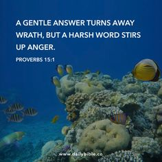 Proverbs 15:1  A gentle answer turns away wrath, but a harsh word stirs up anger.