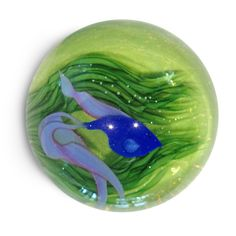 """Lundberg Studios has a beautiful line of paperweights with gorgeous detail. Featured below is the Blue Beta Fish Mini Paperweight. This stunning and detailed paperweight is 3"""" in diameter and 2"""" tall. #paperweight #beautiful #stunning #betafish #lundberg #orlando #winterpark"""