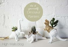 If you spend any time on Pinterest, Etsy or DIY blogs you've probably come across these fun dinosaur planters. The dinosaur toys are easy to find at yard sales, thrift shops and flea markets. Some people do a great job spray painting the dinosaurs first and some use exotic plants. High Walls blog has a …