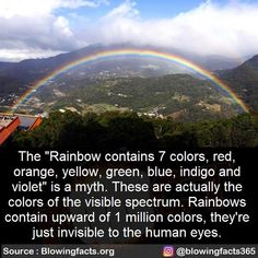 It Matters To Me, Visible Spectrum, Mind Blowing Facts, Human Eye, Deceit, Mind Blown, Mindfulness, Eyes, Life