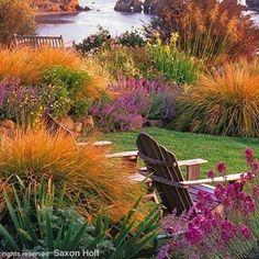 Backyard English Garden || What a scene. Specializing in light. Amazing garden.