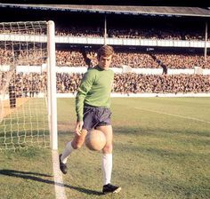 Pat Jennings retrieves the ball from the crowd ready to take a goal kick at White Hart Lane #THFC