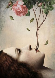 Christian Schloe SECRET OF THE ROSE