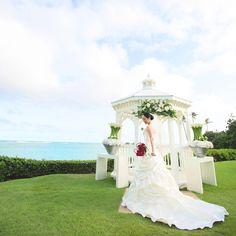 ハワイ挙式・海外挙式なら[クラシコウエディング]ザ・カハラ・ホテル&リゾート #クラシコウェディング #海外ウェディング #ハワイウェディング #ハワイ挙式 #ソラシタウェディング #ガーデンウェディング #ガーデン挙式 #ホテルウェディング #ホテ婚 #ナチュラルウェディング #ウェディングフォト #結婚式準備 #プレ花嫁 #カハラウェディング #カハラホテル #カハラリゾート #ダイヤモンドヘッドガゼボ #classicowedding #destinationwedding #hawaiiwedding #gardenwedding #outdoorwedding #weddingdecoration #weddingcoordination #weddingphotography #bridetobe #kahalawedding #kahalahotel #kahalaresort #diamondheadgazebo