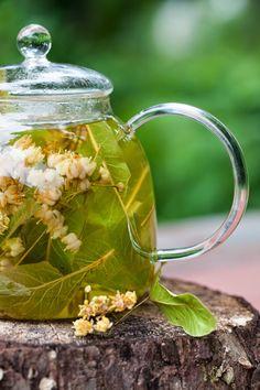 Linden Tea for a Summer Afternoon: stimulates abundant perspiration, decreasing body temperature.